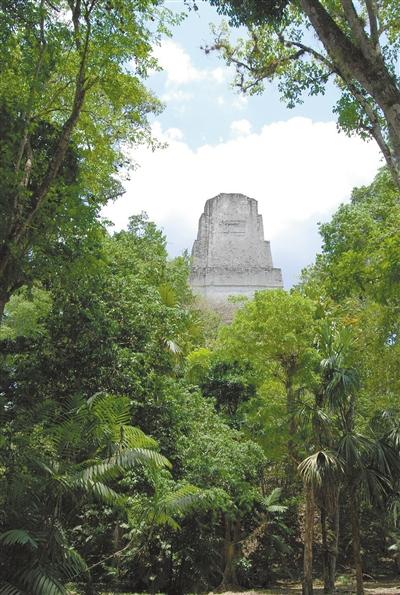 科学家在玛雅废城水库中发现大量汞和藻类 文明或因水污染终结